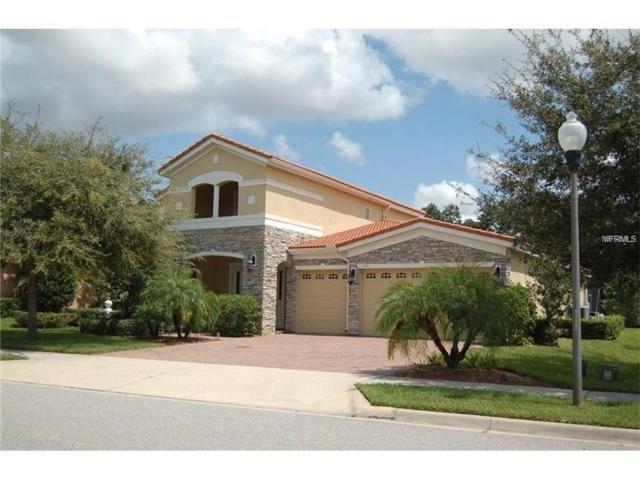 2145 Tillman Avenue, Winter Garden, FL 34787 (MLS #O5541983) :: NewHomePrograms.com LLC