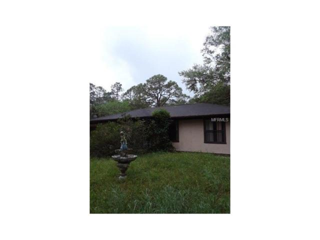 940 Saint Catherine Avenue, Christmas, FL 32709 (MLS #O5542708) :: The Duncan Duo & Associates