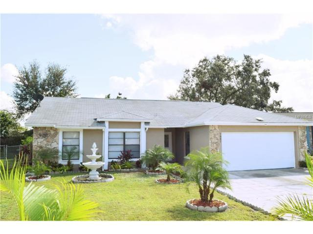 7987 Sapphire Lane, Orlando, FL 32822 (MLS #O5542801) :: The Duncan Duo & Associates