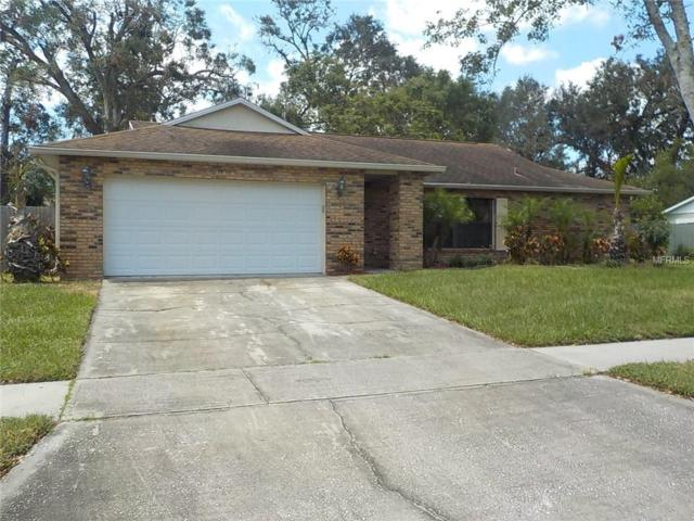 3218 Mcewan Lane, Orlando, FL 32812 (MLS #O5542869) :: Team Pepka