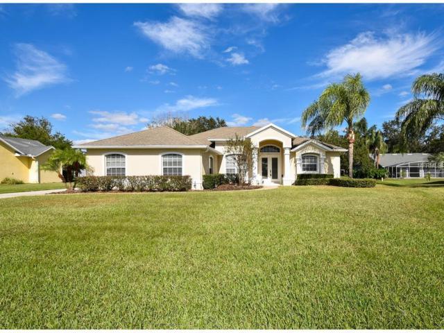 5311 Crane Hill Court, Saint Cloud, FL 34771 (MLS #O5545299) :: G World Properties