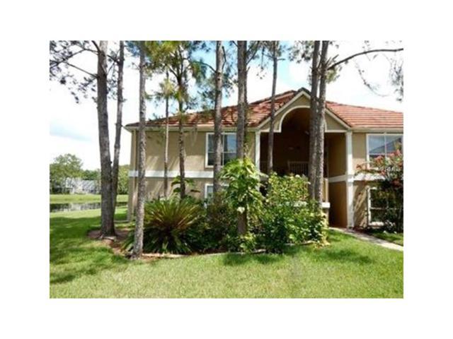 9481 Highland Oak Drive #1106, Tampa, FL 33647 (MLS #O5546288) :: Team Bohannon Keller Williams, Tampa Properties