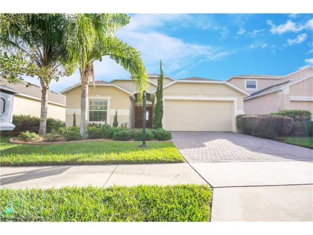 12034 Great Commission Way, Orlando, FL 32832 (MLS #O5546616) :: Godwin Realty Group