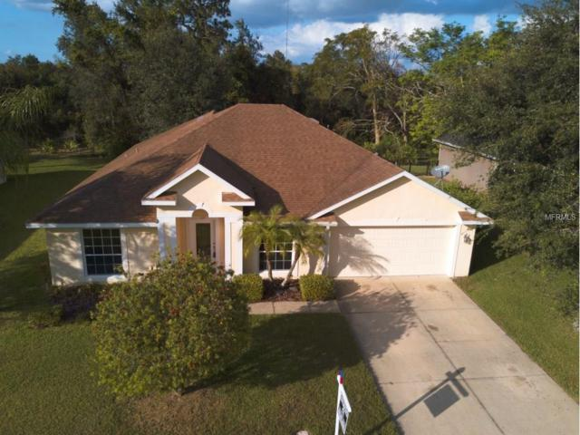 133 Hammock Oak Circle, Debary, FL 32713 (MLS #O5547357) :: Mid-Florida Realty Team