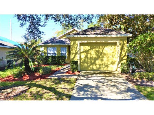 3005 Andover Court, Mount Dora, FL 32757 (MLS #O5547471) :: KELLER WILLIAMS CLASSIC VI