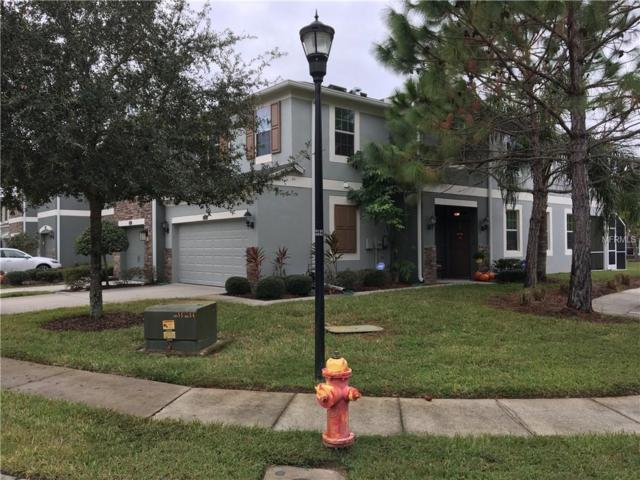 12565 Streamdale Drive, Tampa, FL 33626 (MLS #O5547619) :: Griffin Group