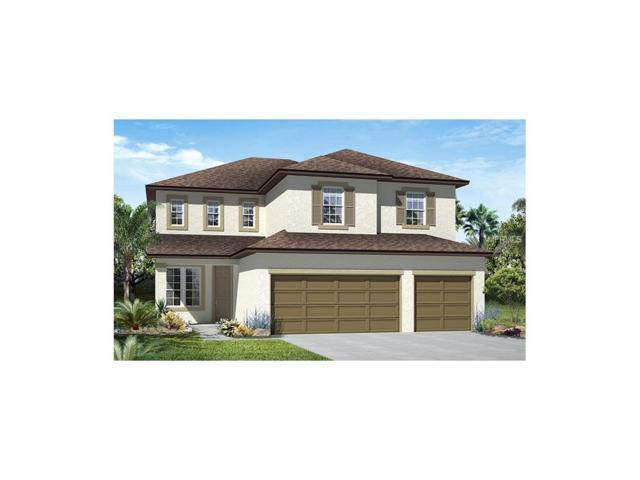 3170 Dark Sky Drive, Harmony, FL 34773 (MLS #O5547639) :: Godwin Realty Group