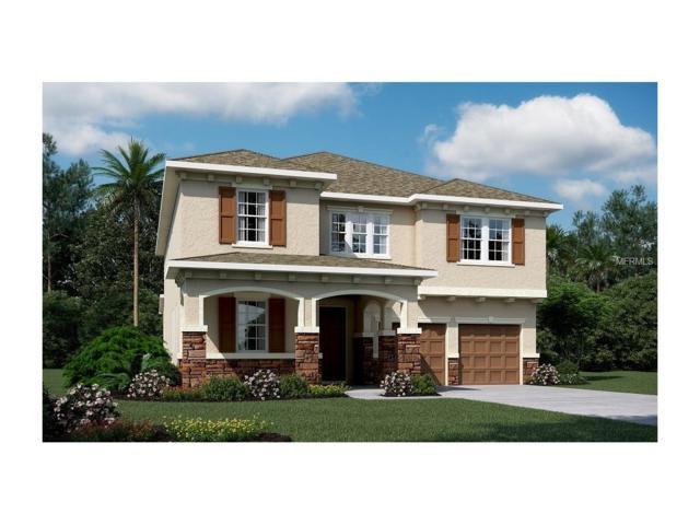 3164 Dark Sky Drive, Harmony, FL 34773 (MLS #O5547661) :: Godwin Realty Group