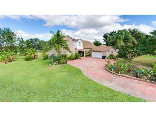 8549 Hillcrest Drive, Groveland, FL 34736 (MLS #O5547682) :: RealTeam Realty
