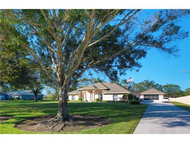 3940 Lakeview Acres Road, Saint Cloud, FL 34772 (MLS #O5547761) :: Godwin Realty Group