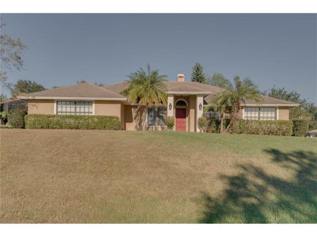 11046 Country Hill Road, Clermont, FL 34711 (MLS #O5547960) :: Revolution Real Estate