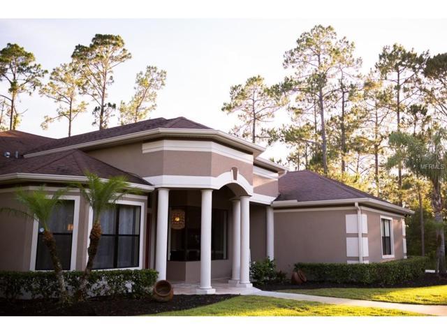 13912 Hickory Tree Court, Orlando, FL 32832 (MLS #O5548112) :: Godwin Realty Group