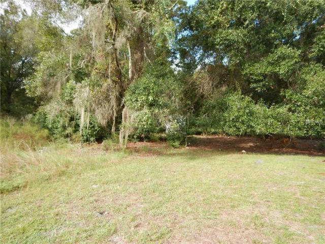 4641 Mitchell Road, Land O Lakes, FL 34638 (MLS #O5548127) :: Cartwright Realty