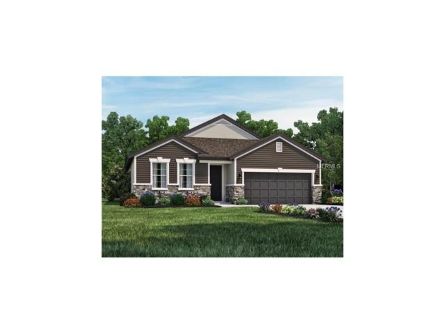 3449 Middlebrook Place, Harmony, FL 34773 (MLS #O5548471) :: G World Properties