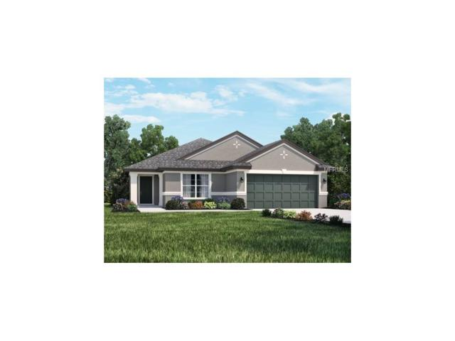 3433 Middlebrook Place, Harmony, FL 34773 (MLS #O5548536) :: G World Properties