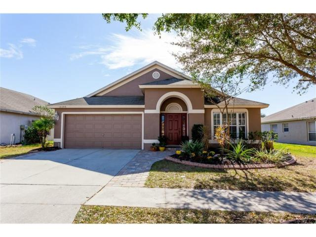 10309 Soaring Eagle Drive, Riverview, FL 33578 (MLS #O5548556) :: Cartwright Realty