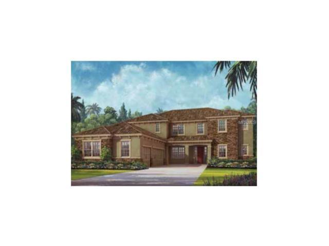 427 Blue Birch Court, Sanford, FL 32771 (MLS #O5548564) :: Mid-Florida Realty Team