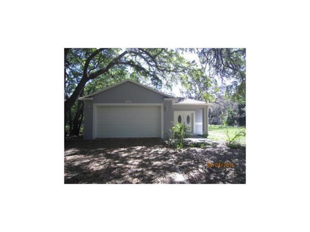 1654 Poinsettia Avenue, Tarpon Springs, FL 34689 (MLS #O5548691) :: Griffin Group