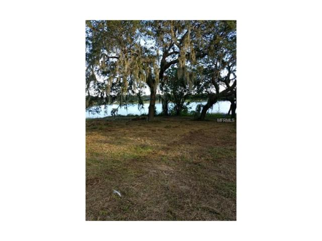Lake Bluff Road, Mascotte, FL 34753 (MLS #O5548693) :: NewHomePrograms.com LLC
