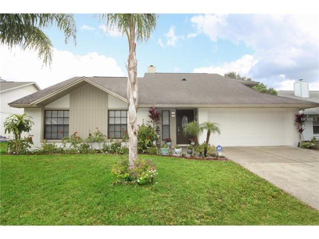 3960 Biscayne Drive, Winter Springs, FL 32708 (MLS #O5548752) :: G World Properties