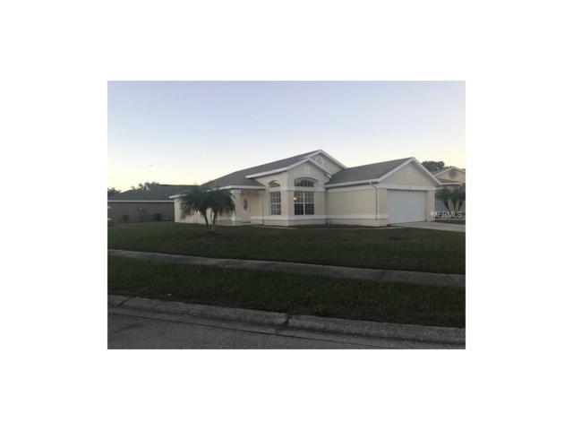 3111 Tall Grass Place, Kissimmee, FL 34743 (MLS #O5548775) :: G World Properties