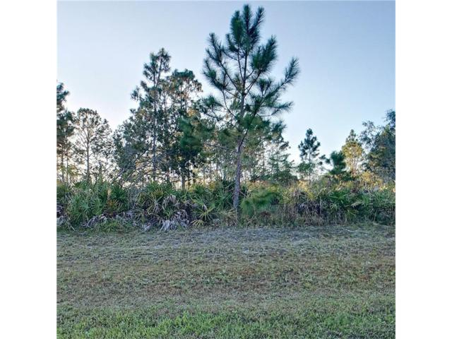 4607 Wright Bros Road, Frostproof, FL 33843 (MLS #O5549516) :: The Duncan Duo Team