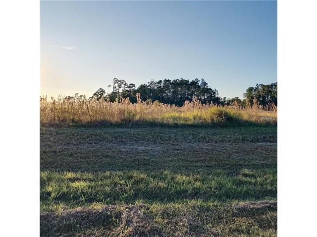 4559 Wright Bros Road, Frostproof, FL 33843 (MLS #O5549594) :: Baird Realty Group