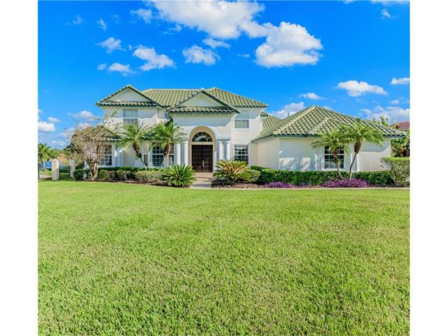 13500 Magnolia Park Court, Windermere, FL 34786 (MLS #O5550695) :: Mark and Joni Coulter | Better Homes and Gardens