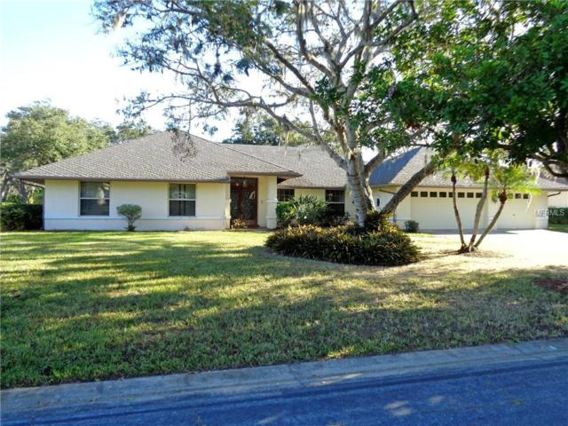 3006 Old Orchard Lane, Parrish, FL 34219 (MLS #O5550932) :: Medway Realty