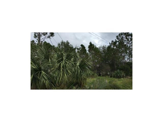 13 N 6TH Street, Orlando, FL 32833 (MLS #O5551531) :: Premium Properties Real Estate Services
