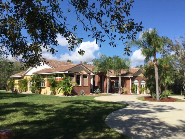 3150 Appaloosa Court, Kissimmee, FL 34746 (MLS #O5552162) :: Premium Properties Real Estate Services