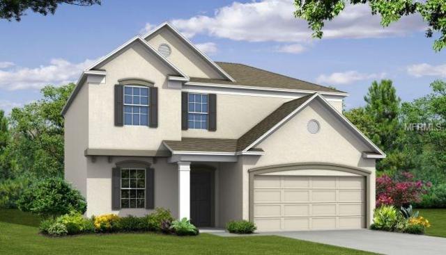 3806 Wayfarer Way, Palmetto, FL 34221 (MLS #O5552206) :: Medway Realty