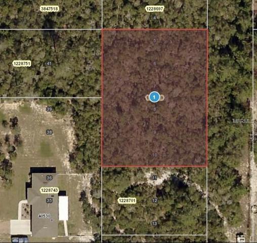 E 2ND Avenue, Umatilla, FL 32784 (MLS #O5554578) :: The Price Group