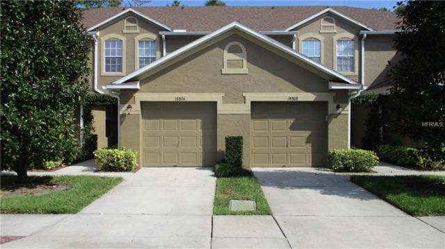 18806 Duquesne Drive, Tampa, FL 33647 (MLS #O5554909) :: Team Bohannon Keller Williams, Tampa Properties