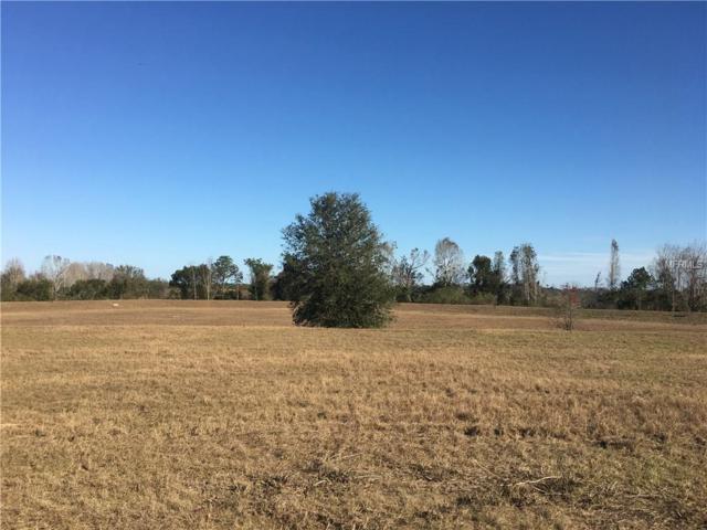 3066 Sunscape Terrace, Groveland, FL 34736 (MLS #O5555369) :: Griffin Group