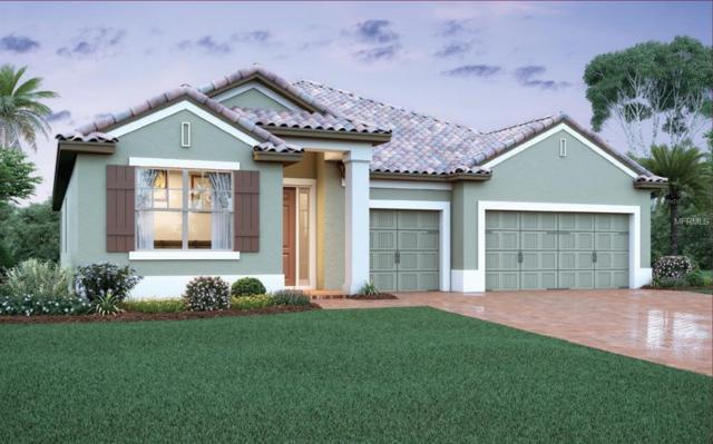 10939 Citron Oaks Drive, Orlando, FL 32836 (MLS #O5556007) :: The Lockhart Team