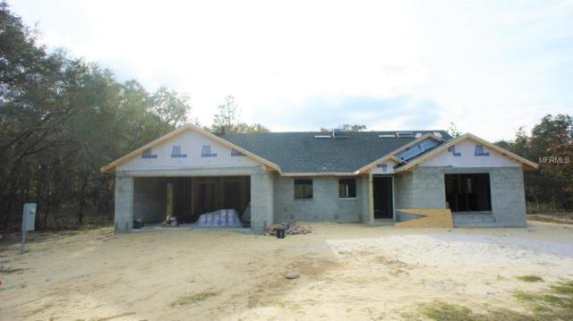 5466 W Tortuga Loop, Lecanto, FL 34461 (MLS #O5556776) :: Team Bohannon Keller Williams, Tampa Properties