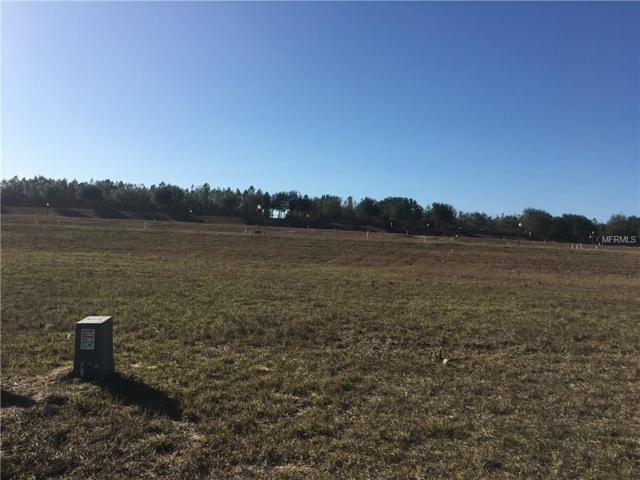 3041 Sunscape Terrace, Groveland, FL 34736 (MLS #O5556801) :: Griffin Group