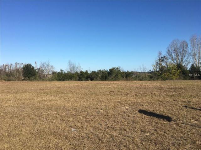 3042 Sunscape Terrace, Groveland, FL 34736 (MLS #O5556817) :: Griffin Group