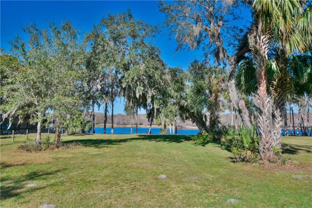 E Osceola Road, Geneva, FL 32732 (MLS #O5556878) :: The Lockhart Team