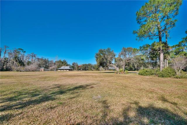 E Osceola Road, Geneva, FL 32732 (MLS #O5556882) :: The Lockhart Team