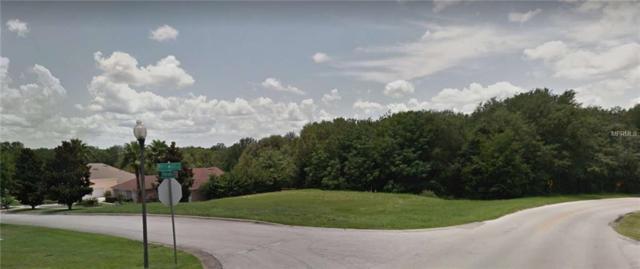 16500 Magnolia Terrace, Montverde, FL 34756 (MLS #O5557098) :: Team Bohannon Keller Williams, Tampa Properties