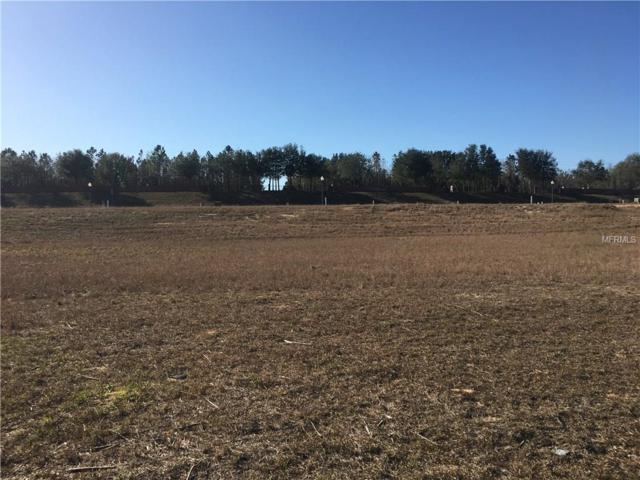 2017 Sloans Outlook Drive, Groveland, FL 34736 (MLS #O5557476) :: Team Pepka