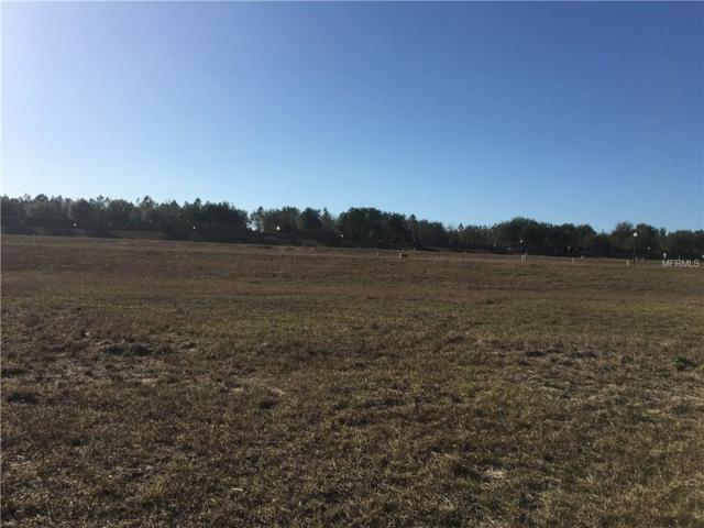 3049 Sunscape Terrace, Groveland, FL 34736 (MLS #O5557484) :: Team Pepka
