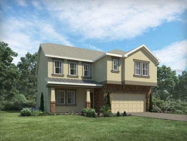 1797 Fullers Oak Loop, Winter Garden, FL 34787 (MLS #O5557500) :: Griffin Group