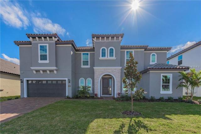 8096 Ludington Circle, Orlando, FL 32836 (MLS #O5557783) :: StoneBridge Real Estate Group