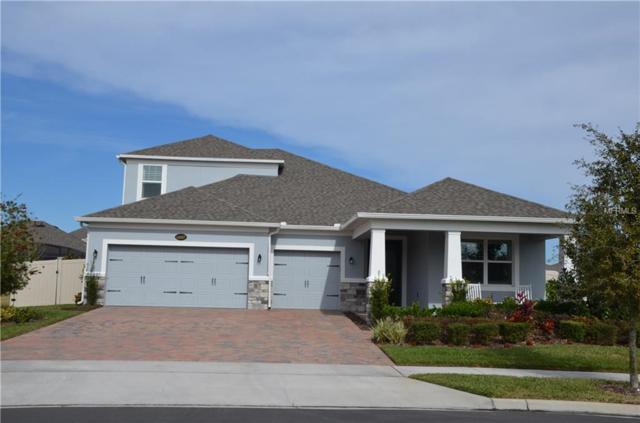 16067 Black Hickory Drive, Winter Garden, FL 34787 (MLS #O5557816) :: StoneBridge Real Estate Group