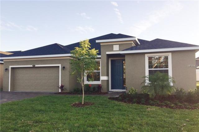 4812 Terra Sole Place, Saint Cloud, FL 34771 (MLS #O5557911) :: TeamWorks WorldWide