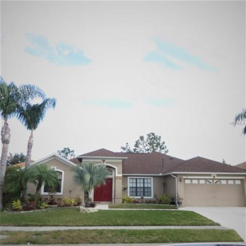 13031 Jewelstone Way, Orlando, FL 32828 (MLS #O5558399) :: The Lockhart Team