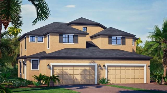 1884 Shumard Ave, Saint Cloud, FL 34771 (MLS #O5559108) :: The Duncan Duo Team